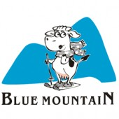 logo: BLUE MOUNTAIN, BH / MG